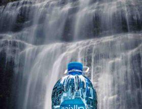 Hydrate et nourrit betekenis