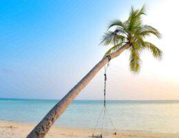 Avis beach waves l'oréal