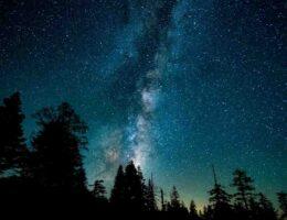 Avis creme nuit elixir jeunesse yves rocher